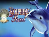 dolphins-pearl Logo